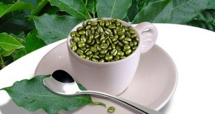 Caffè verde: cos'è e perché fa dimagrire