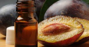 Olio di prugna: i principi attivi che fanno bene alla pelle