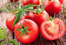 I pomodori non si conservano in frigo: il freddo altera il sapore