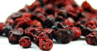 superfood nutrienti bacche di schisandra