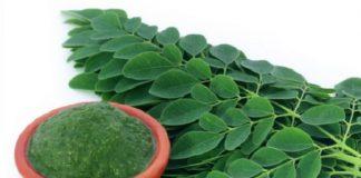 Moringa Oleifera superfood miracoloso: benefici, proprietà e controindicazioni