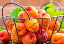 Albicocche, frutti estivi: fate il pieno contro la ritenzione idrica