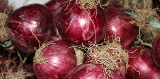 Perché la cipolla fa piangere? Benefici e proprietà della varietà rossa