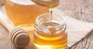Miele di Manuka efficace contro i batteri