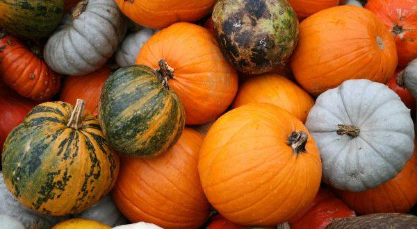 Zucca: l'ortaggio del mese di ottobre, proprietà e ricette gustose