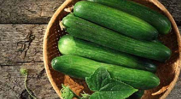 Cetrioli, proprietà e calorie dei protagonisti dell'estate