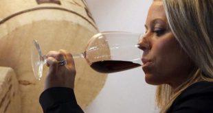 Il vino italiano: alla scoperta del settore vitivinicolo da nord a sud