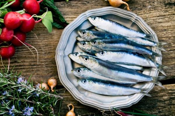 Perché le sardine fanno bene?